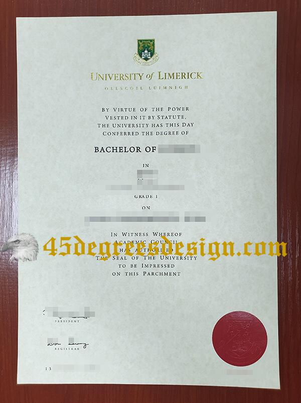 University of Limerick Degree