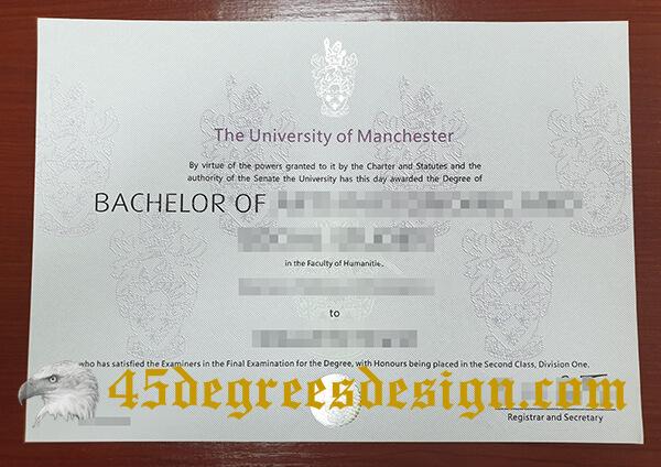 University of Manchester degree