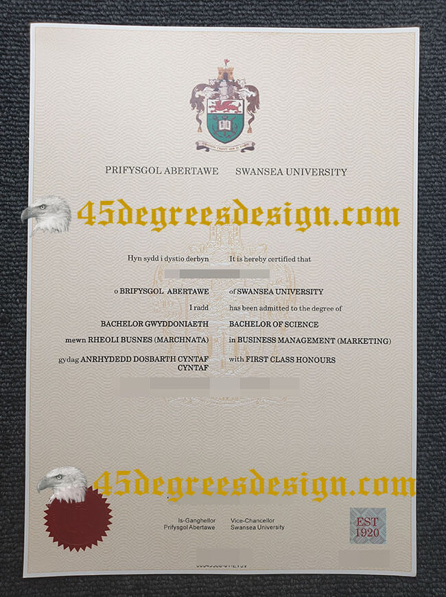 Swansea University Diploma