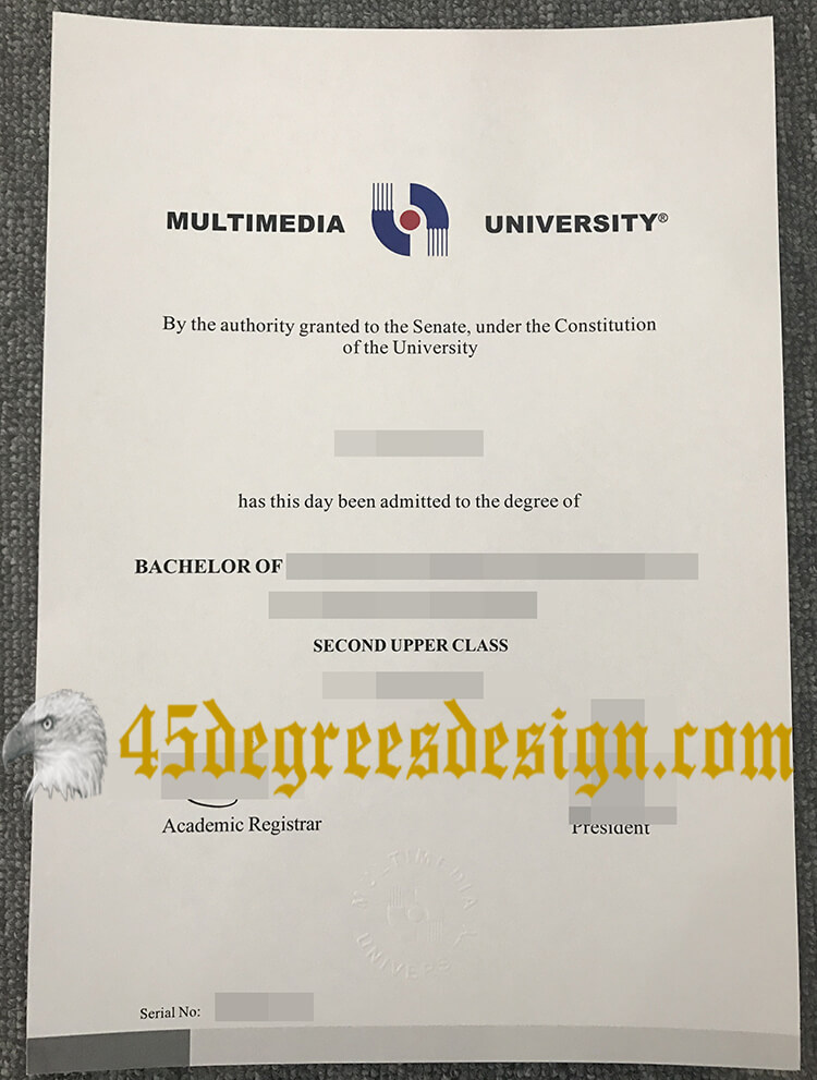 Multimedia University degree