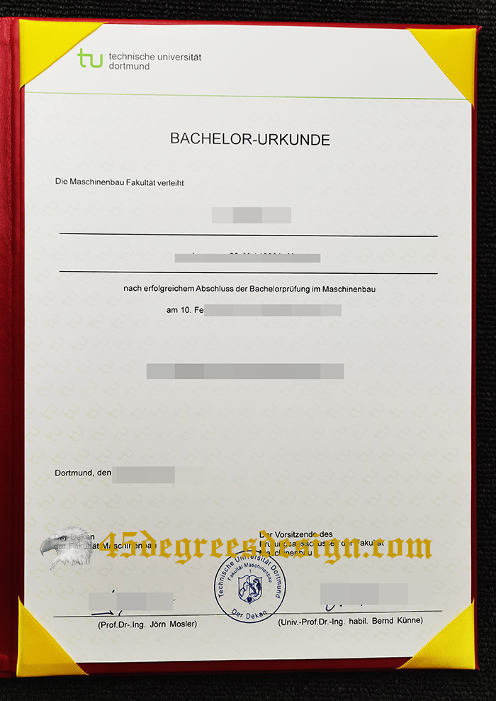 Technische Universität Dortmund diploma