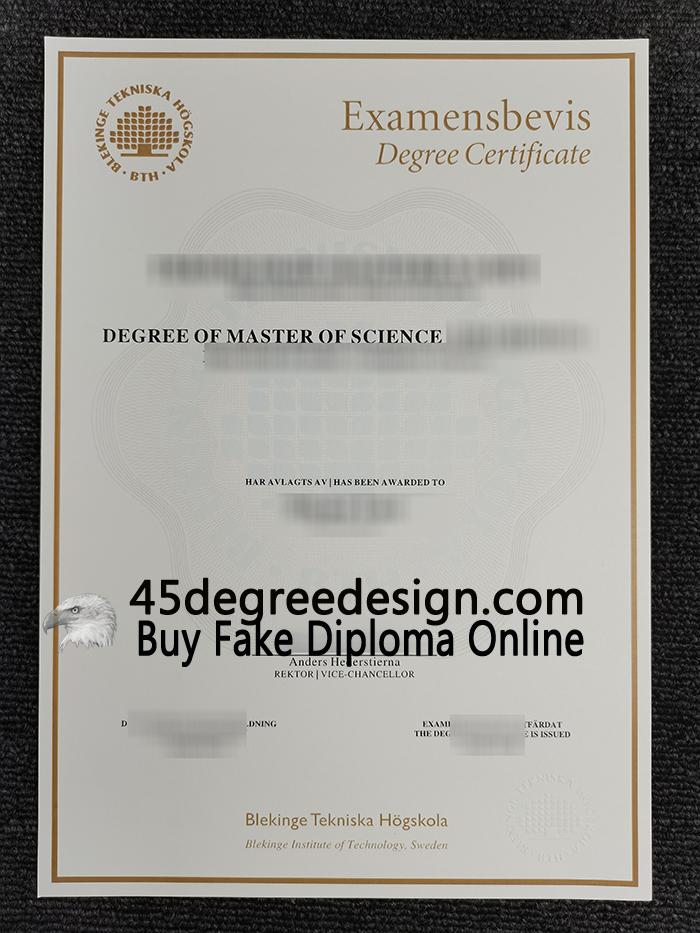 Blekinge Institute of Technology degree