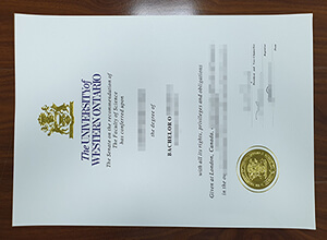 University of Western Ontario degree