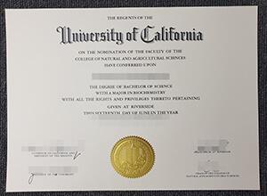 University of California Riverside diploma