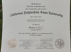 Cal Poly fake diploma