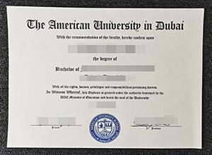 American University In Dubai Diploma