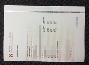 Cambridge Higher School Certificate