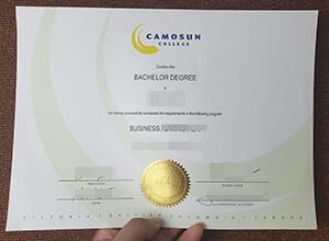 Camosun College degree