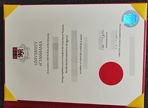 Where can you buy University of Tasmania diploma? Buy UTAS fake degree