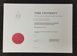Fake York University Diploma from Canada for sale here