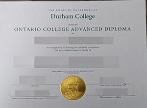 fake Durham College diploma