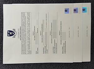 University of Liverpool diploma