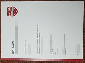 2 Incredible Buy PSB Academy Fake Diploma Examples