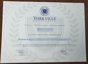 Yorkville University diploma