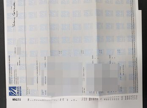 Fake UMass Boston transcript, buy USA diploma certificate