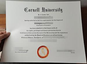 Cornell University bachelor diploma