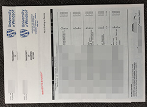 How much to buy a fake University of Windsor transcript?