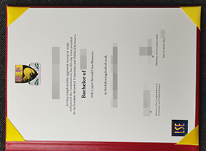 LSE bachelor degree