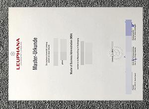 Leuphana Universität Lüneburg diploma
