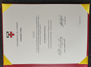 Goldsmiths, University of London diploma