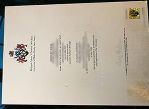 University of Wales Trinity Saint David diploma
