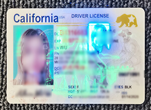 Where to buy a California driver's license in the U.S.