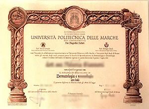 Università Politecnica delle Marche diploma