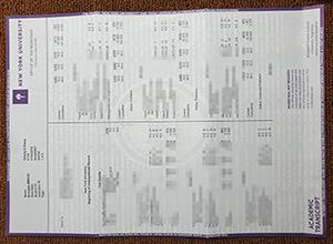 New York University diploma