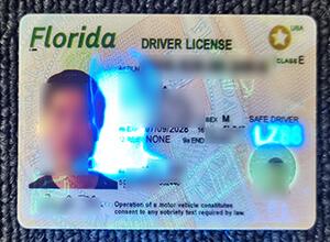 Fake Florida drivers license make, Buy fake drivers license in USA
