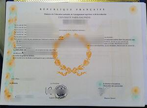 Paris Dauphine University diploma