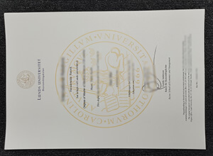 Fake Lunds Universitet diploma, How to buy degree in Sweden
