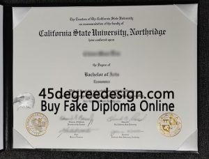 CSUN BA degree