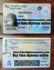 fake Maryland Driver's License