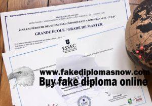 ESSEC Business School master's diploma
