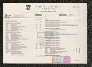 Popular sites for finding fake NUS transcripts, Buy fake diploma in Singapore