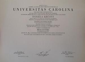 Masaryk University diploma