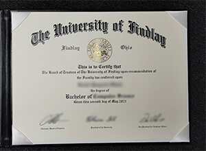 How long to get a phony University of Findlay bachelor's degree?