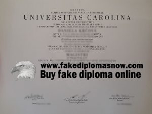 Charles University diploma