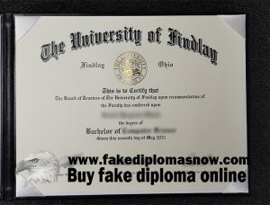 University of Findlay bachelor's degree, University of Findlay diploma