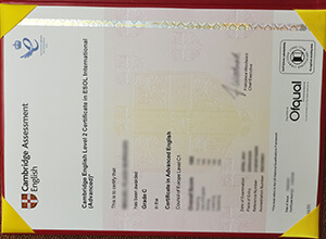 Fake Cambridge C1 Advanced Certificate that look real