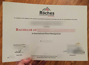 Les Roches degree, Les Roches diploma,