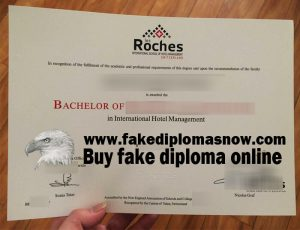 Les Roches diploma, Les Roches fake degree