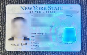 NY State Driver's License