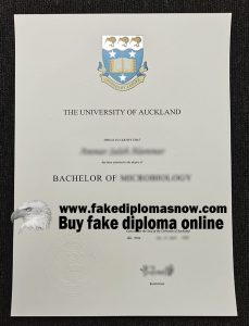 University of Auckland diploma, University of Auckland degree