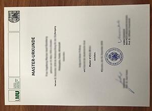 LMU Munich Fake Diploma, Ludwig-Maximilians-Universität München Urkunde