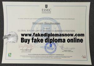 ESSEC Business School diploma, fake ESSEC Business School degree, fake ESSEC Business School certificate