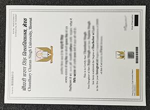 CCS University diploma , CCS University diploma in India